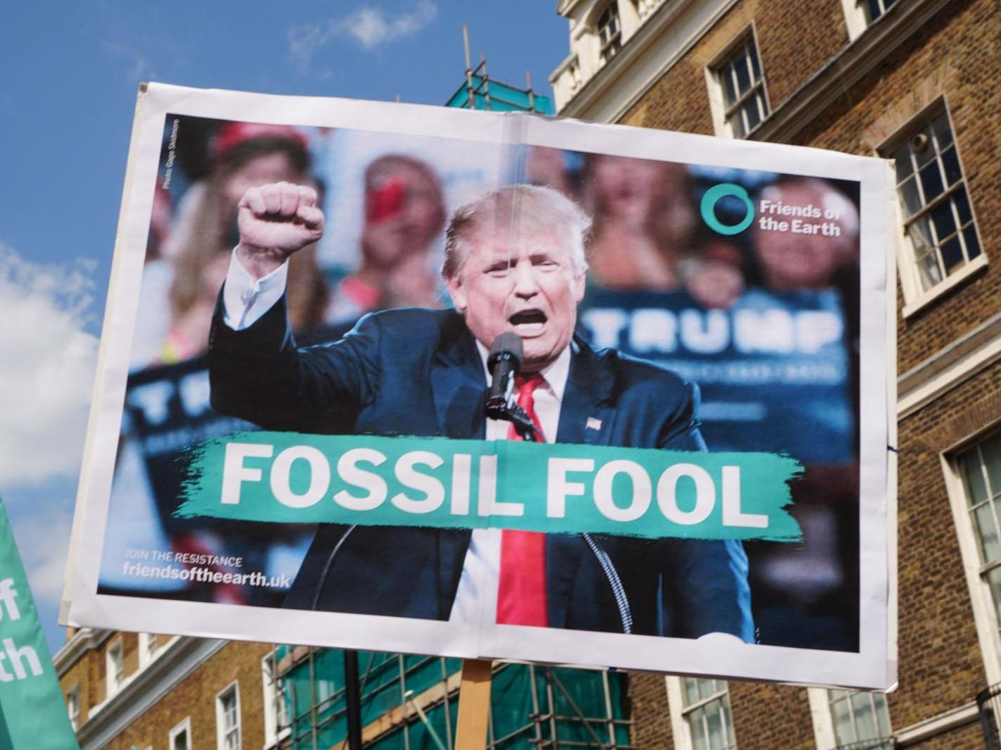 Trump Is a Fool | Matthew Schmitz | First Things |The Fool Trump