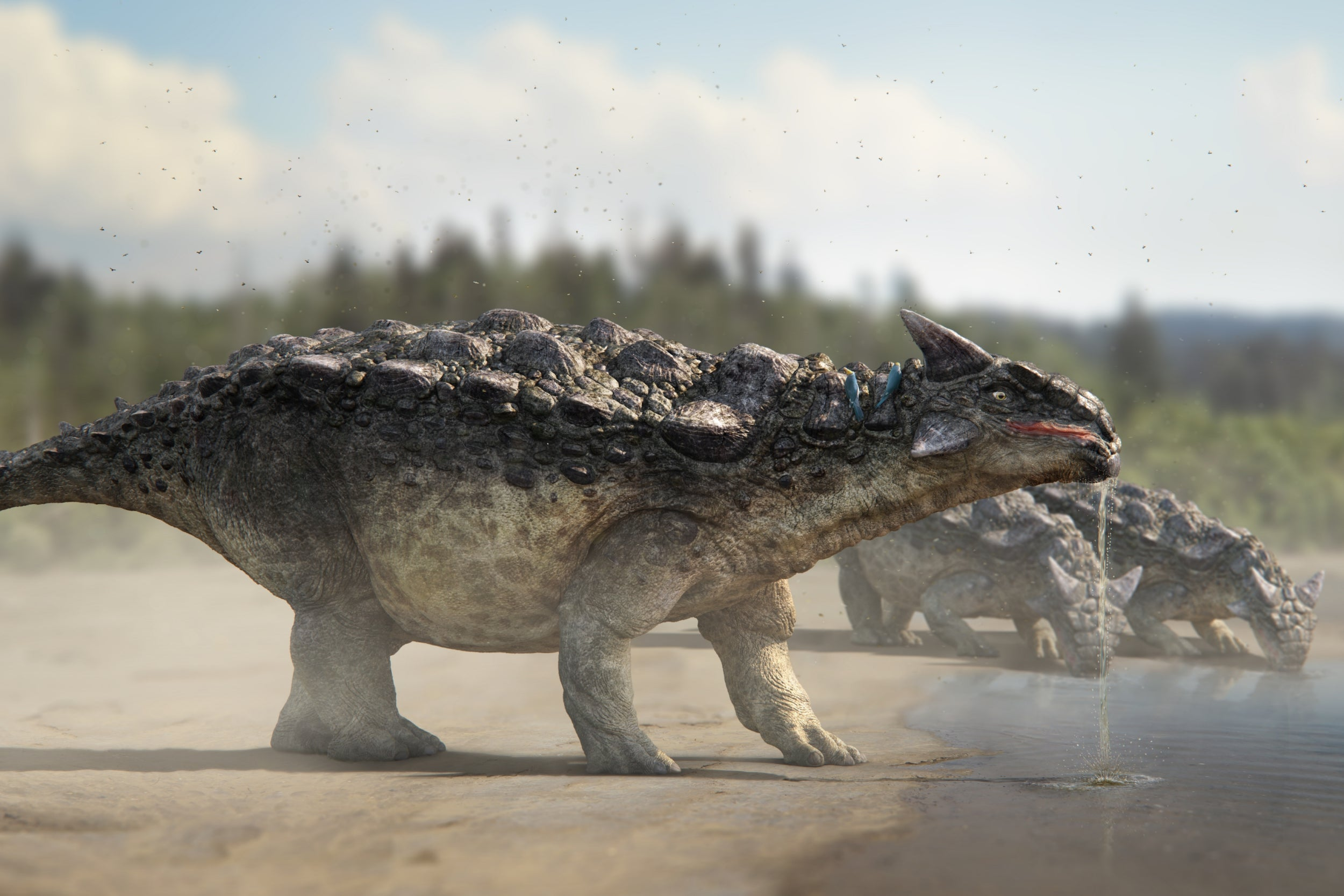 Fossil hunter tries to sell baby T-Rex skeleton on eBay for
