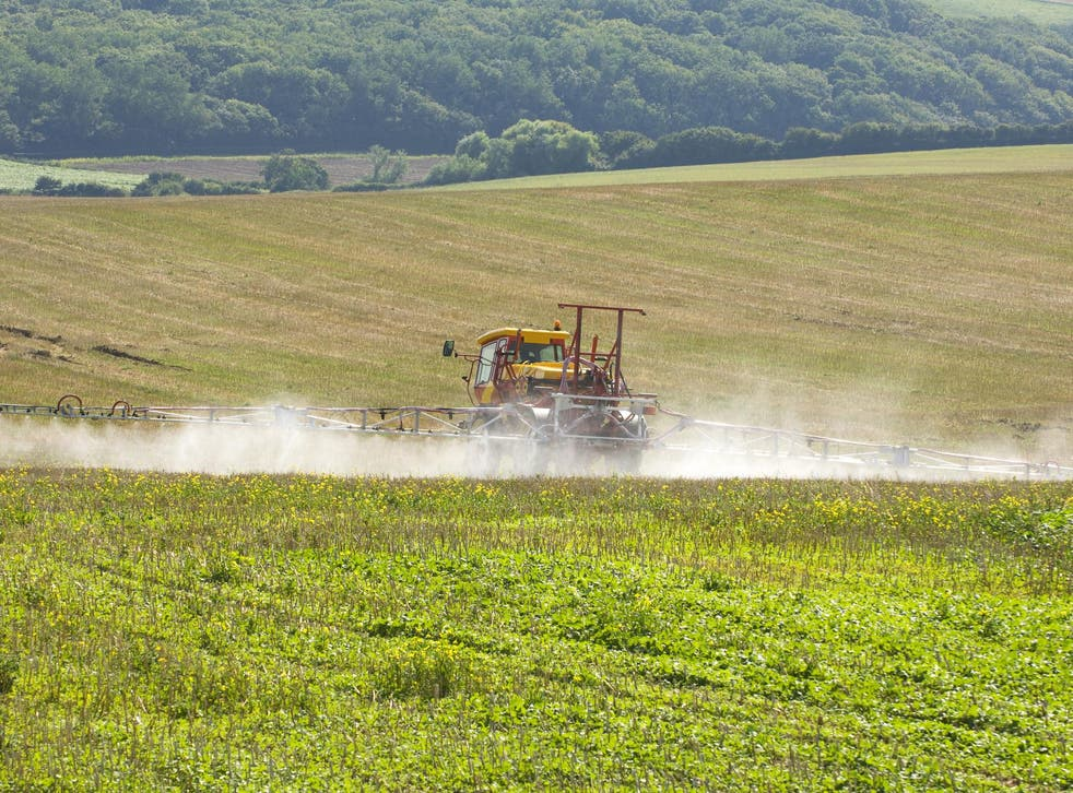 Green groups are concerned that a 'no deal' outcome would affect Britain's farmers and result in fewer agricultural regulations protecting the environment