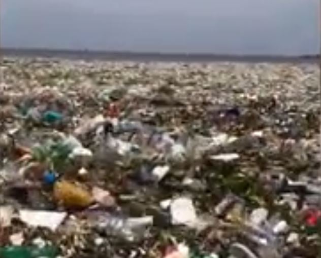 Wave of plastic pollution off coast of Dominican Republic shows extent of global damage