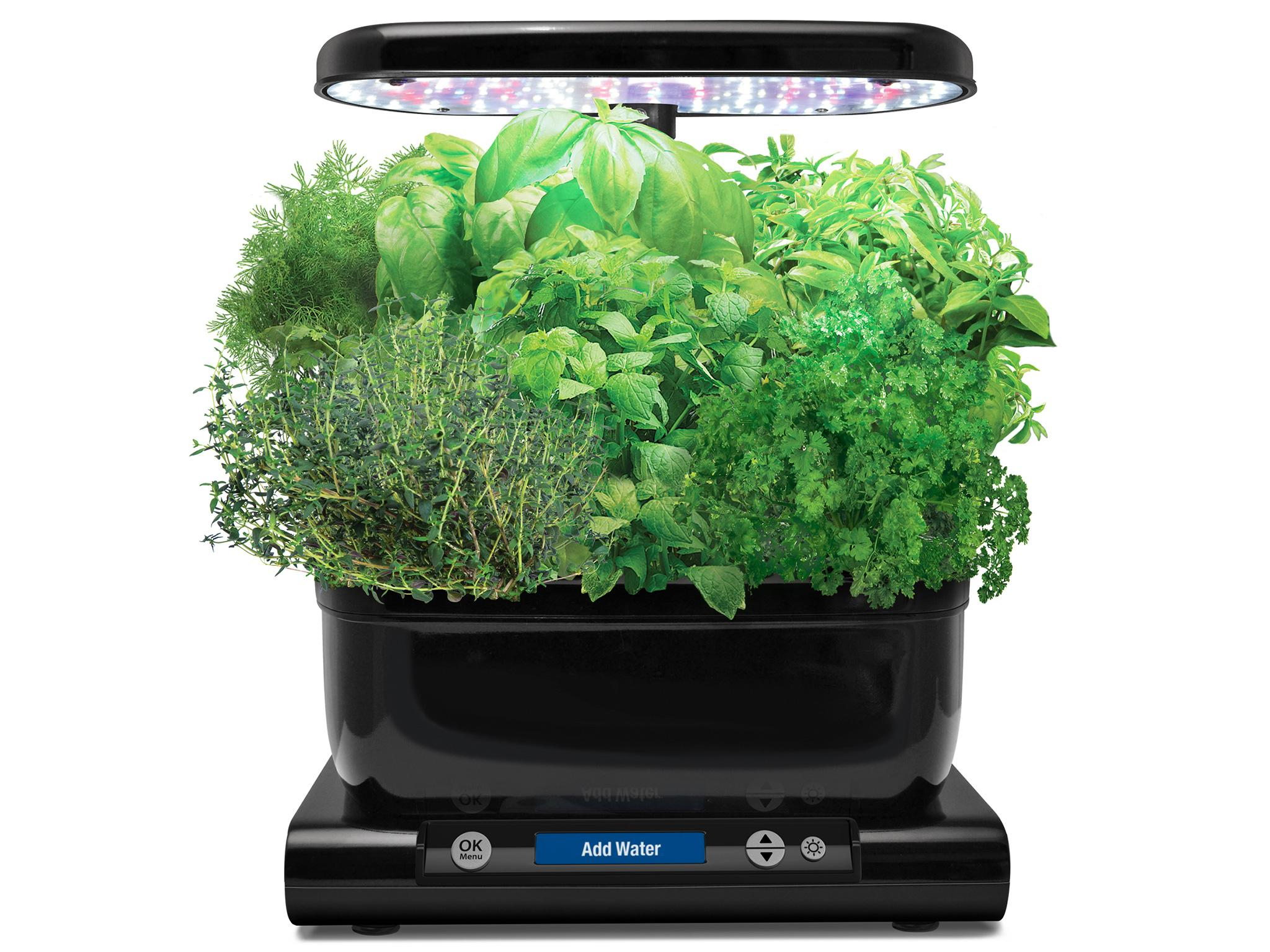 9 best home hydroponics kits | The Independent