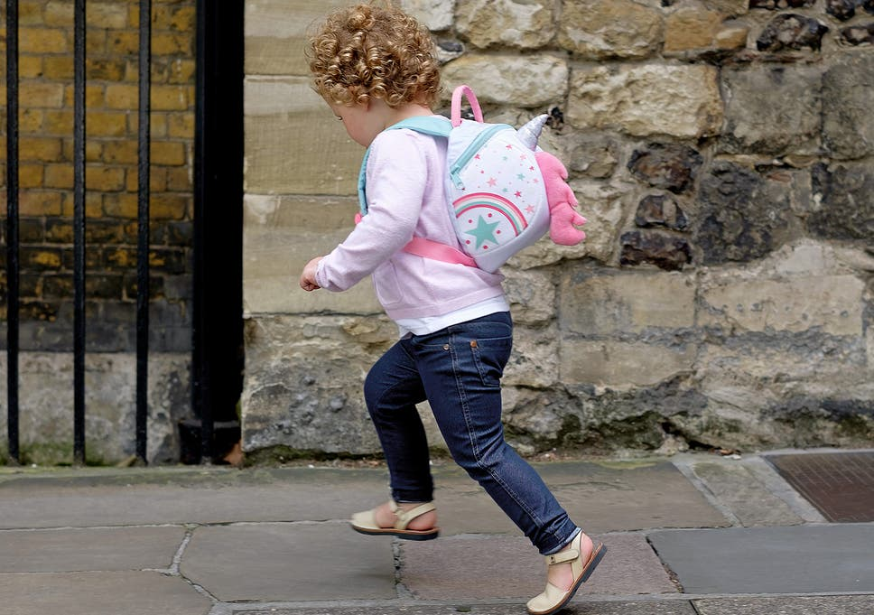 Make sure your youngsters are set school with the best bag