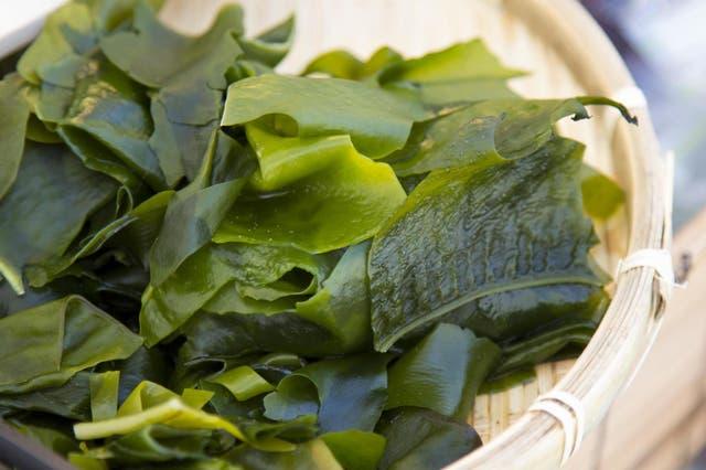 Seaweed has proven benefits to skin health (Stock)