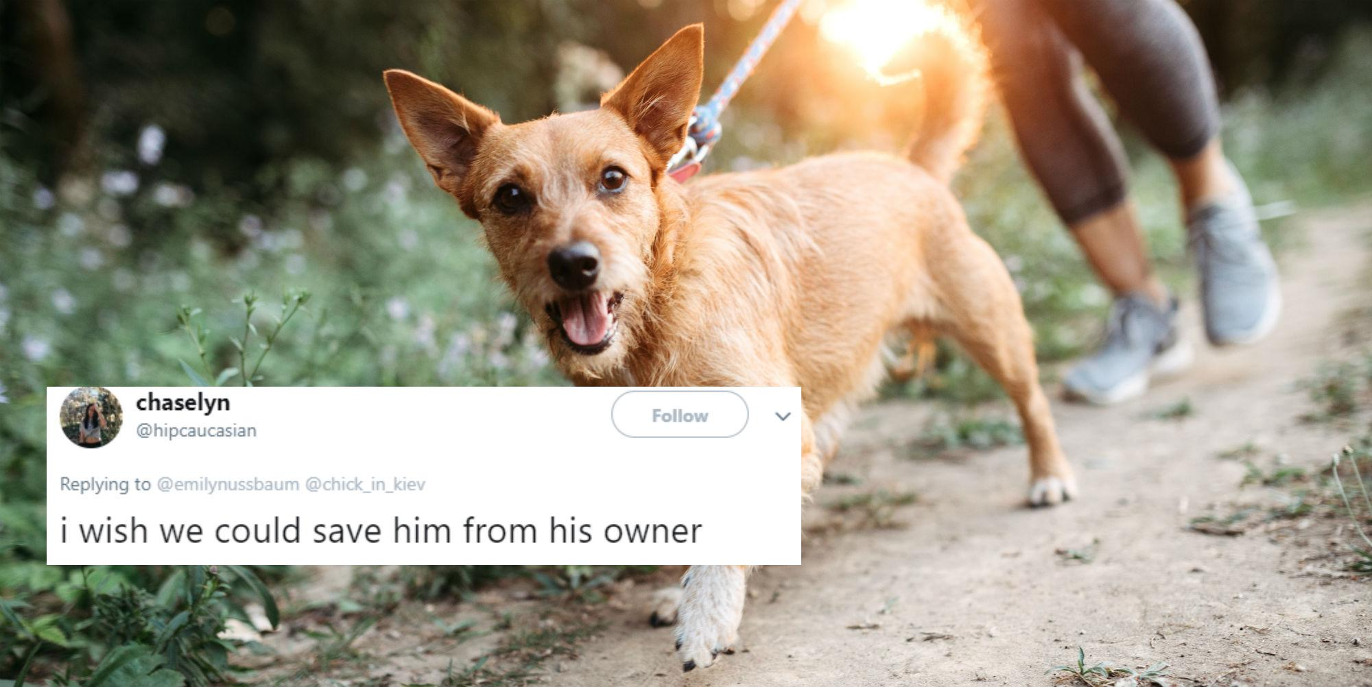 This man s homophobia was unmasked when his date suggested his dog