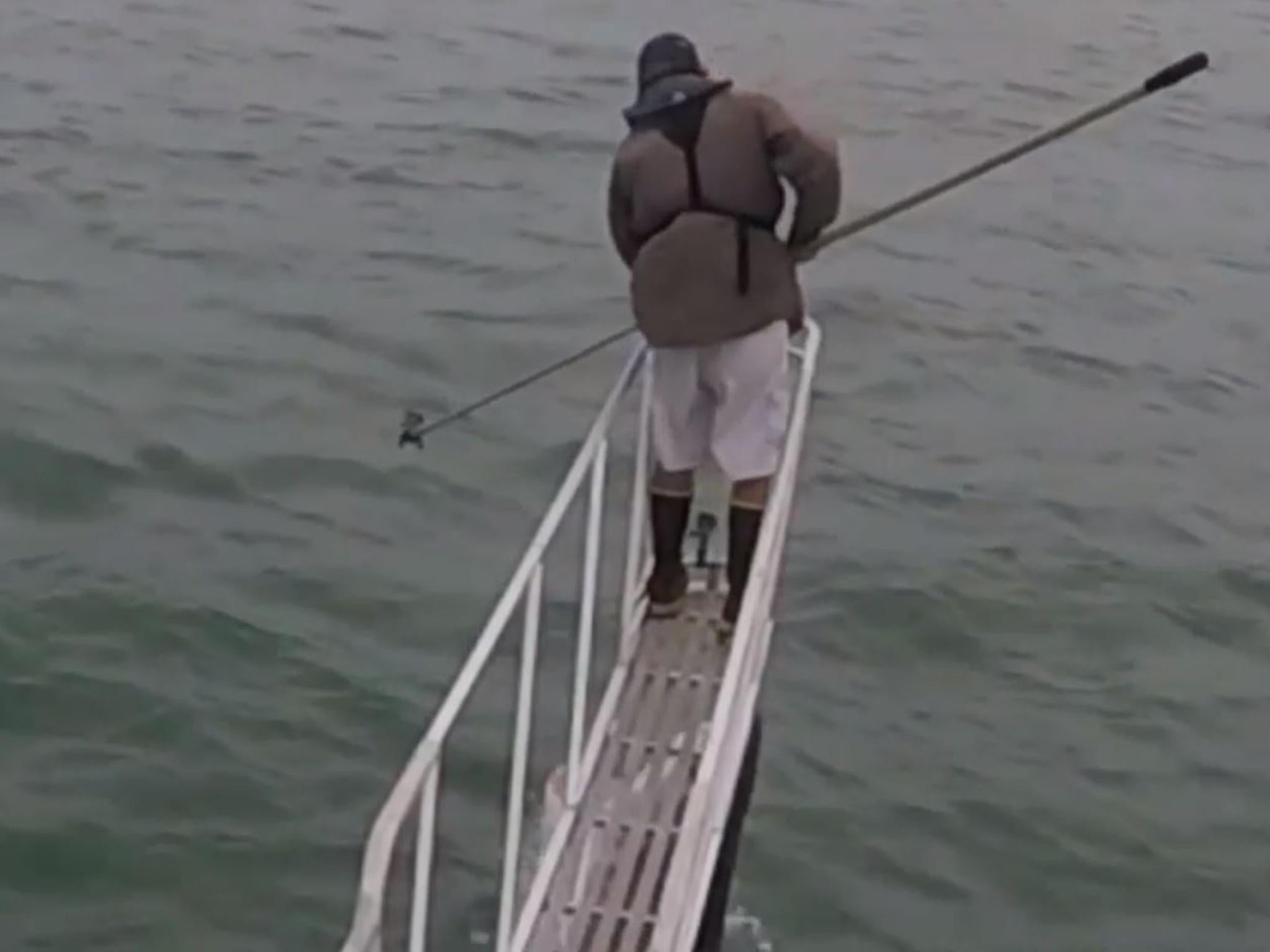 Off the coast of the United States, a shark jumped into a boat to fishermen