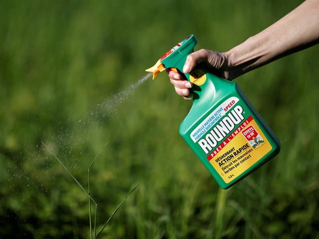 A jury found Monsanto's Roundup weedkiller contributed to a man's terminal cancer