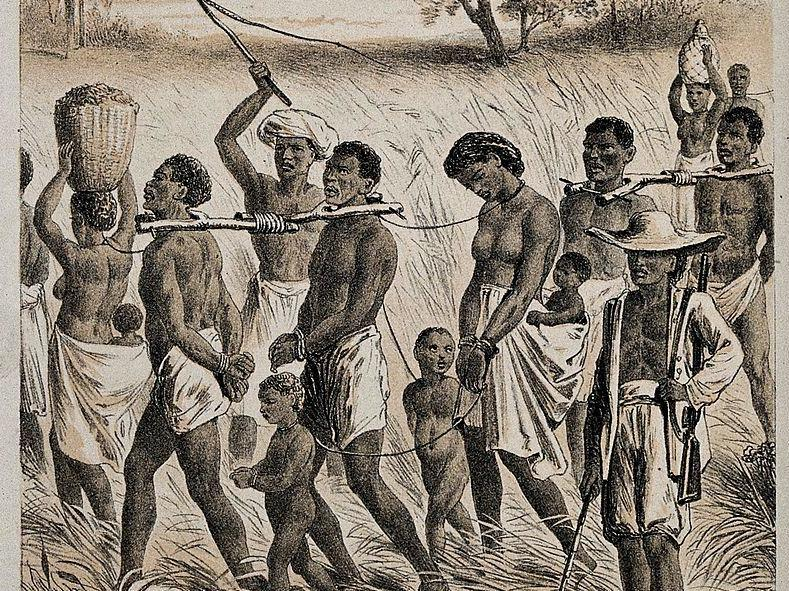 Details of horrific first voyages in transatlantic slave ...