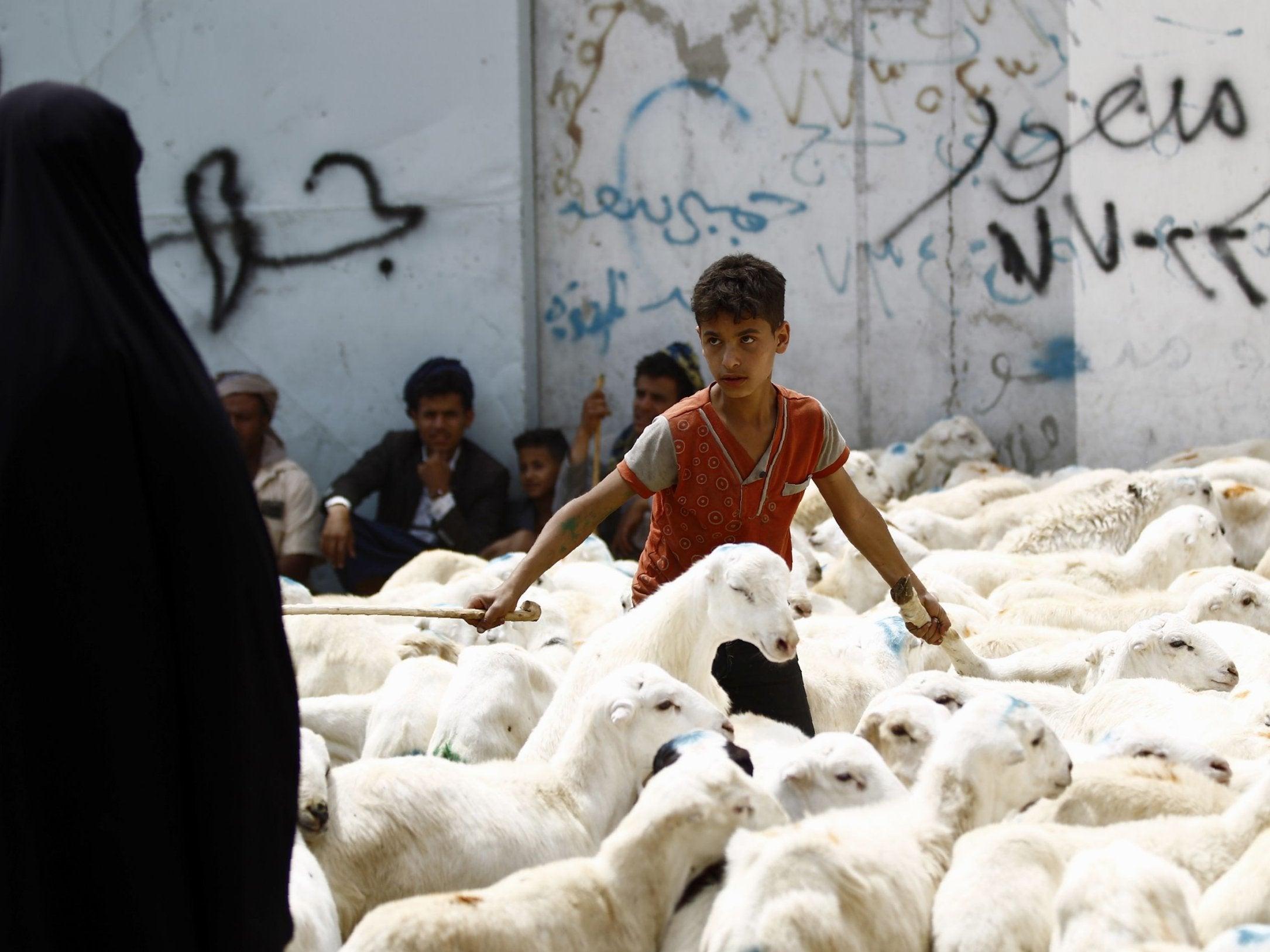 Eid Al Adha Why Do Muslims Sacrifice Animals And Where Is The