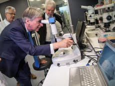 Scientists fear loss of half a billion pounds of funding after no-deal