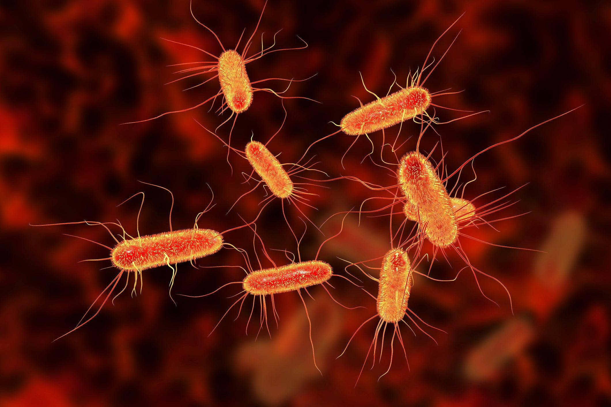 infectie urinara e coli transmitere sexuala in Centennial
