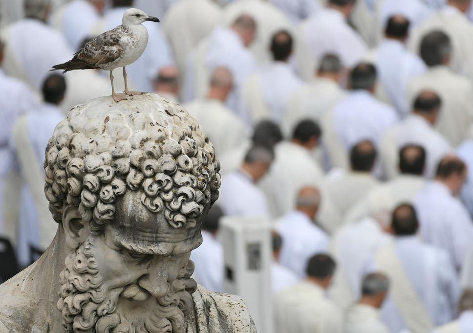 If Some Mayors Promise A Chicken In Every Pot Romes Have Delivered A Gull Atop