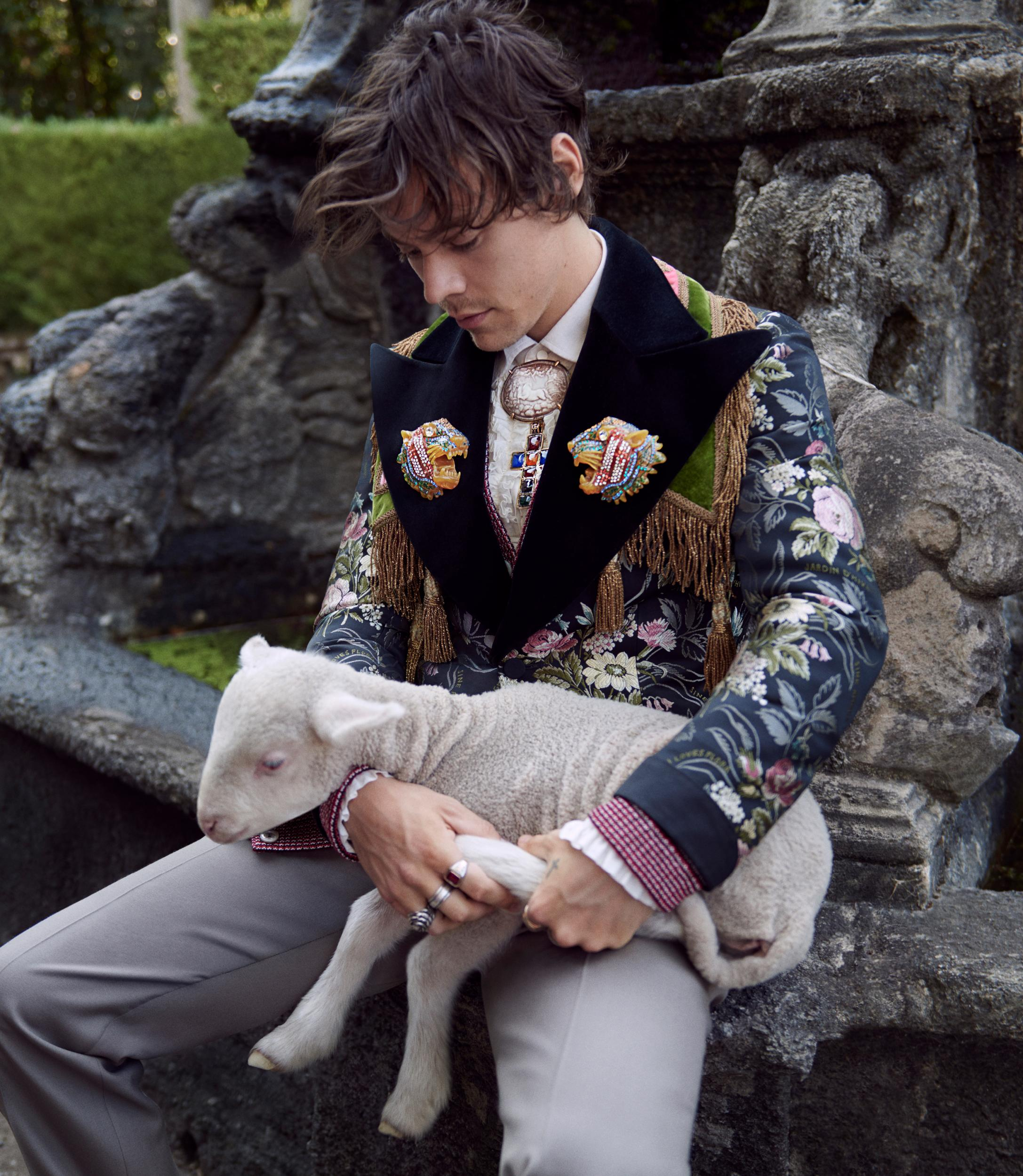 on sale 81c31 d2b4d Harry Styles fronts Gucci campaign with baby pigs and goats ...