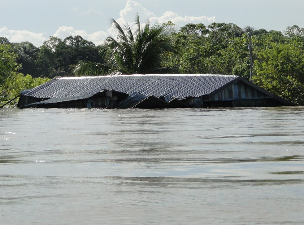 Inundated house along Solimões River (Central Amazonia) during the record-breaking flood in 2012