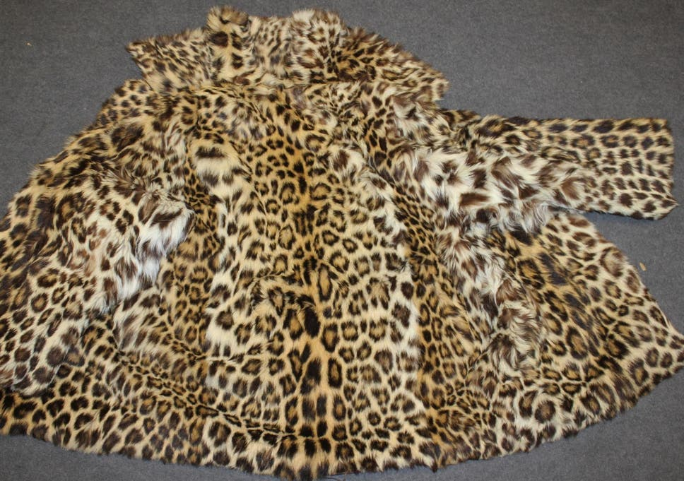 british man caught selling fur coats made from endangered leopards