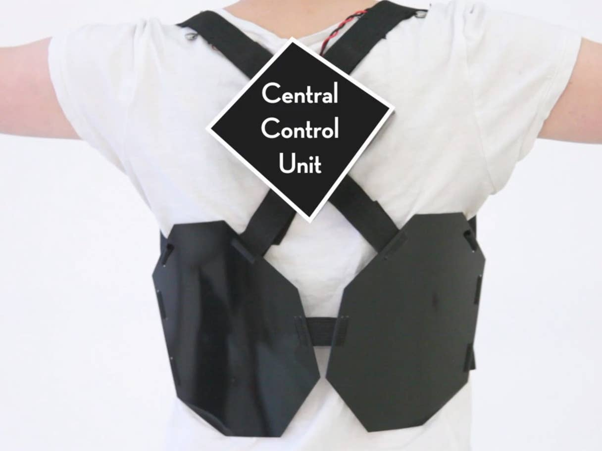 Wearable book vest