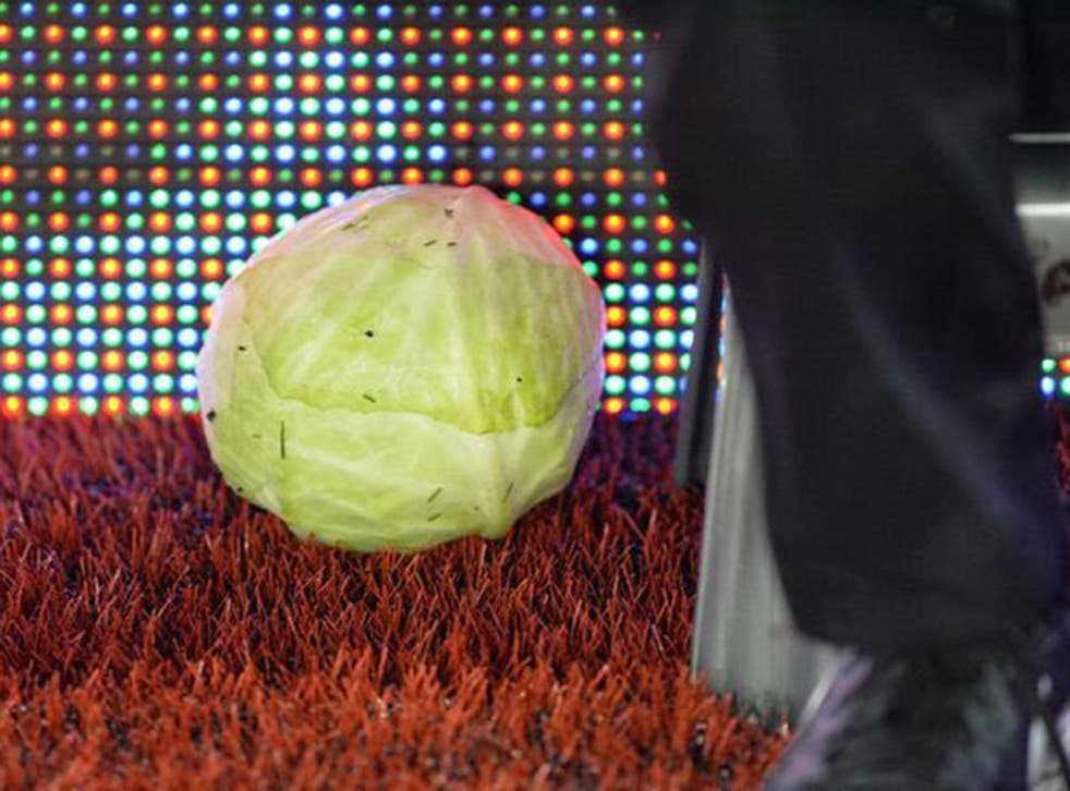A cabbage was thrown at Aston Villa manager Steve Bruce during the 3-3 draw with Preston