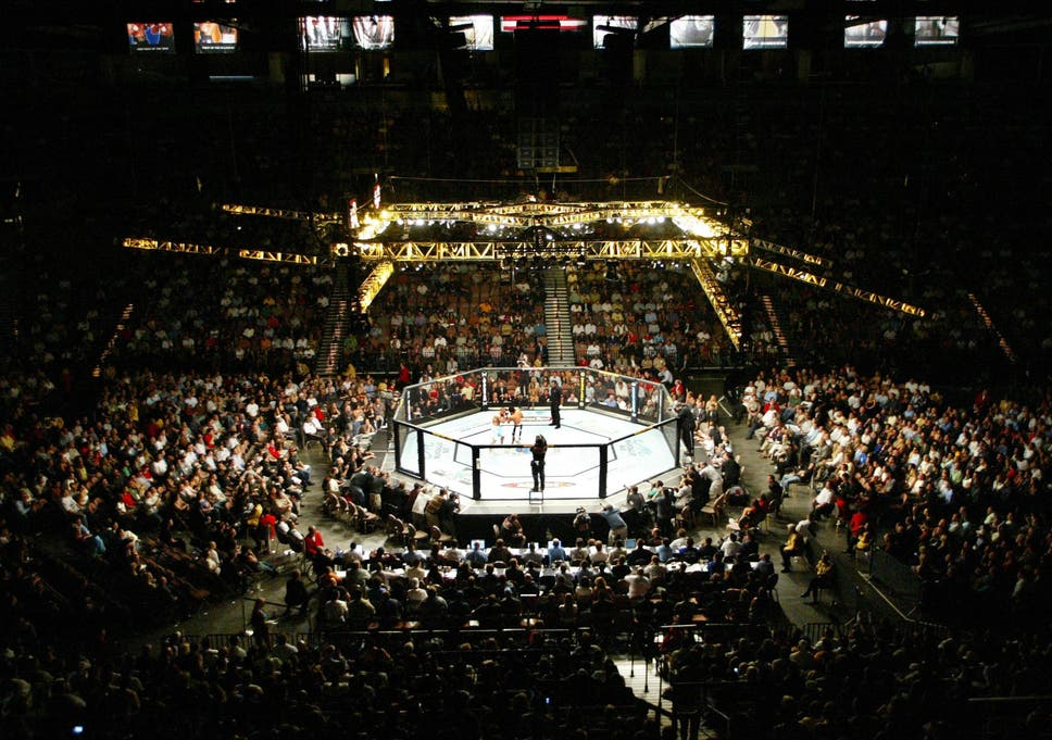 Conor McGregor vs Khabib: Free live streaming of UFC fight