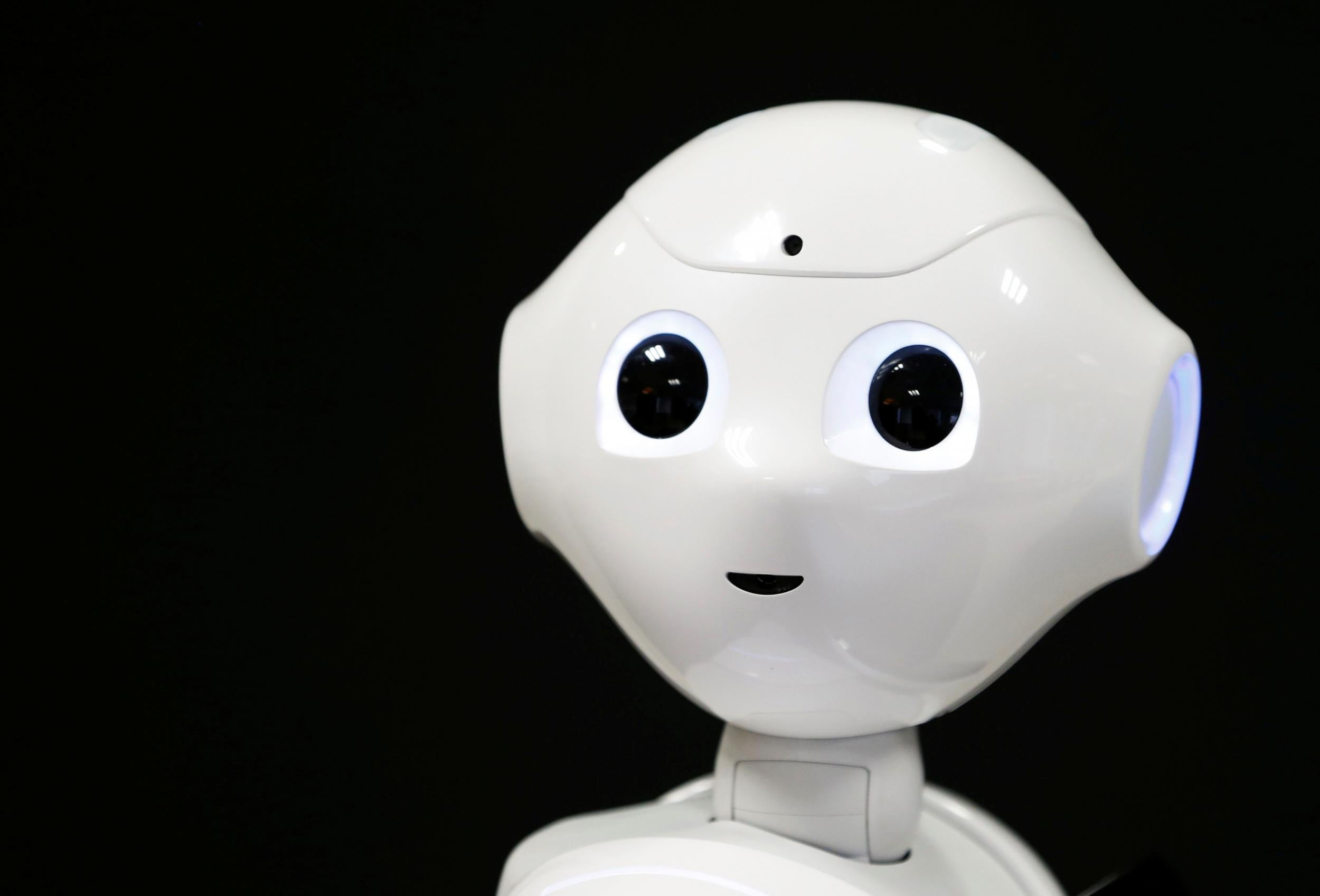 MPs Invite Robot to Give Evidence on AI