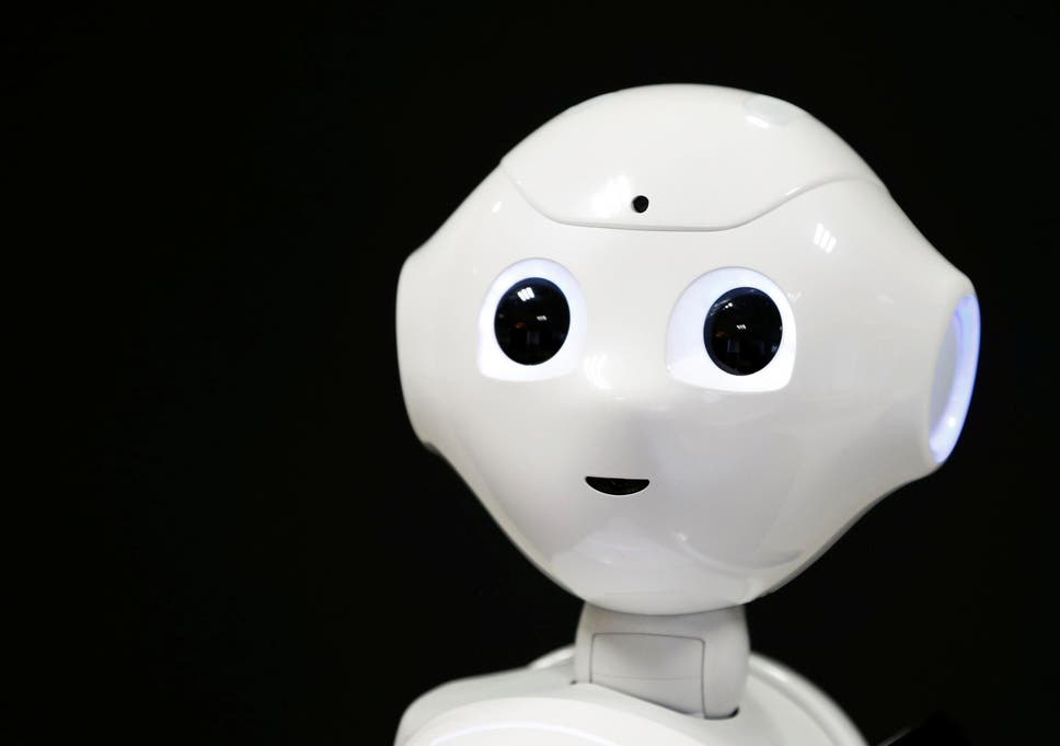 Mps Invite Robot To Give Evidence On Ai The Independent