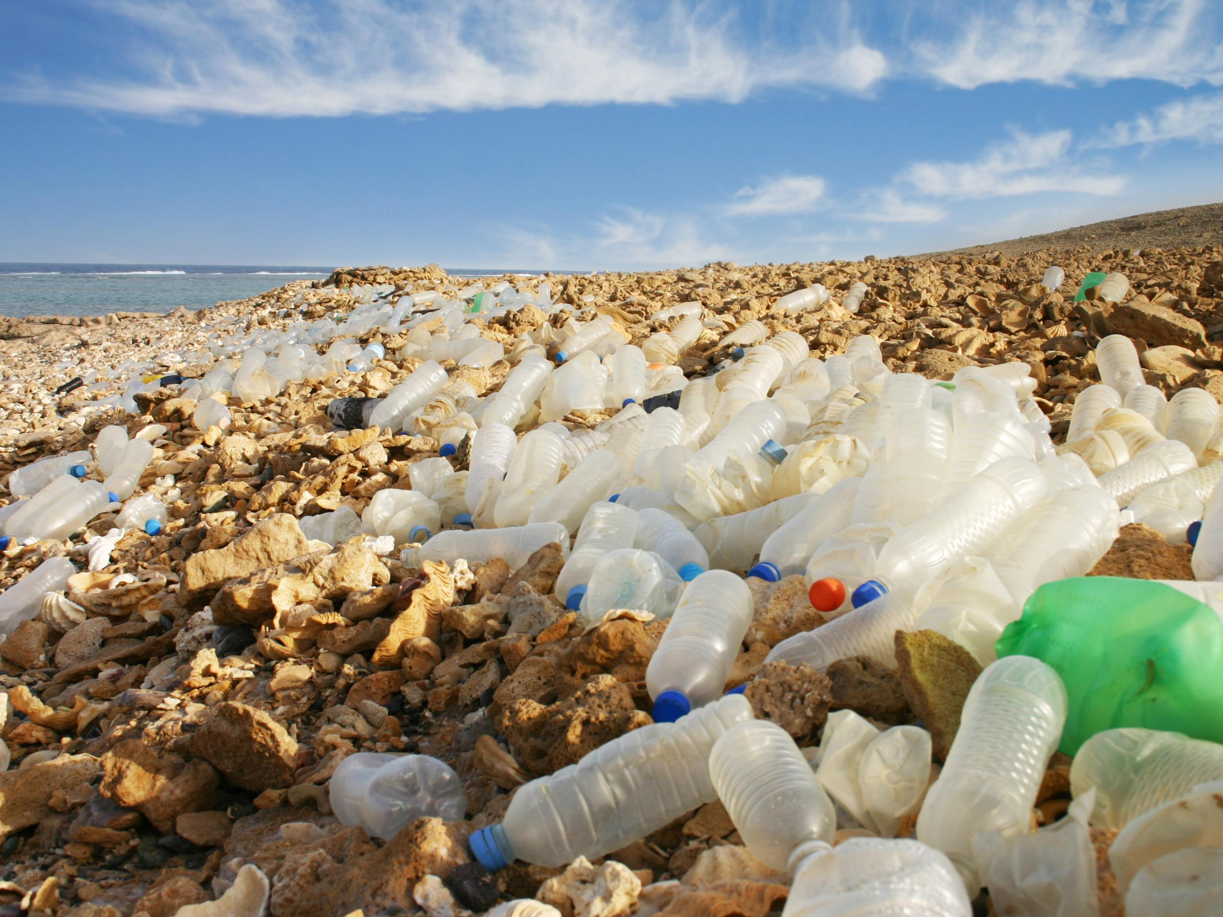 Coca-Cola and Nestle among worst plastic polluters based on