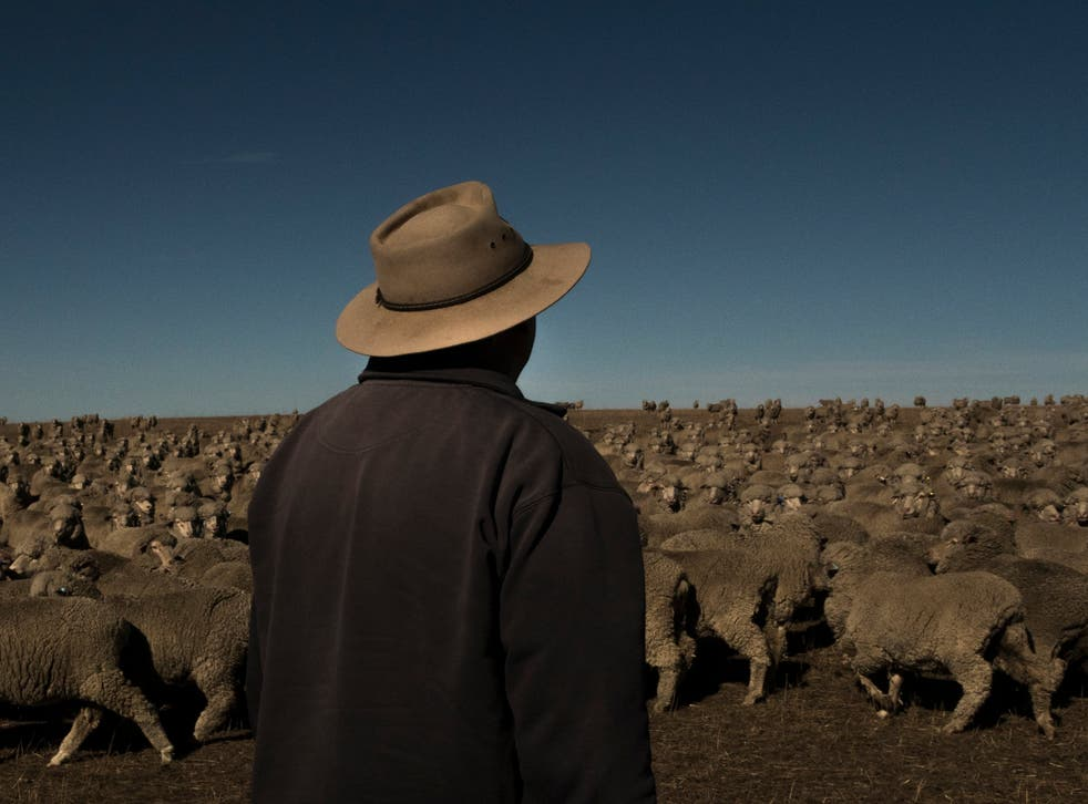 Colin Seis on his farm in New South Wales