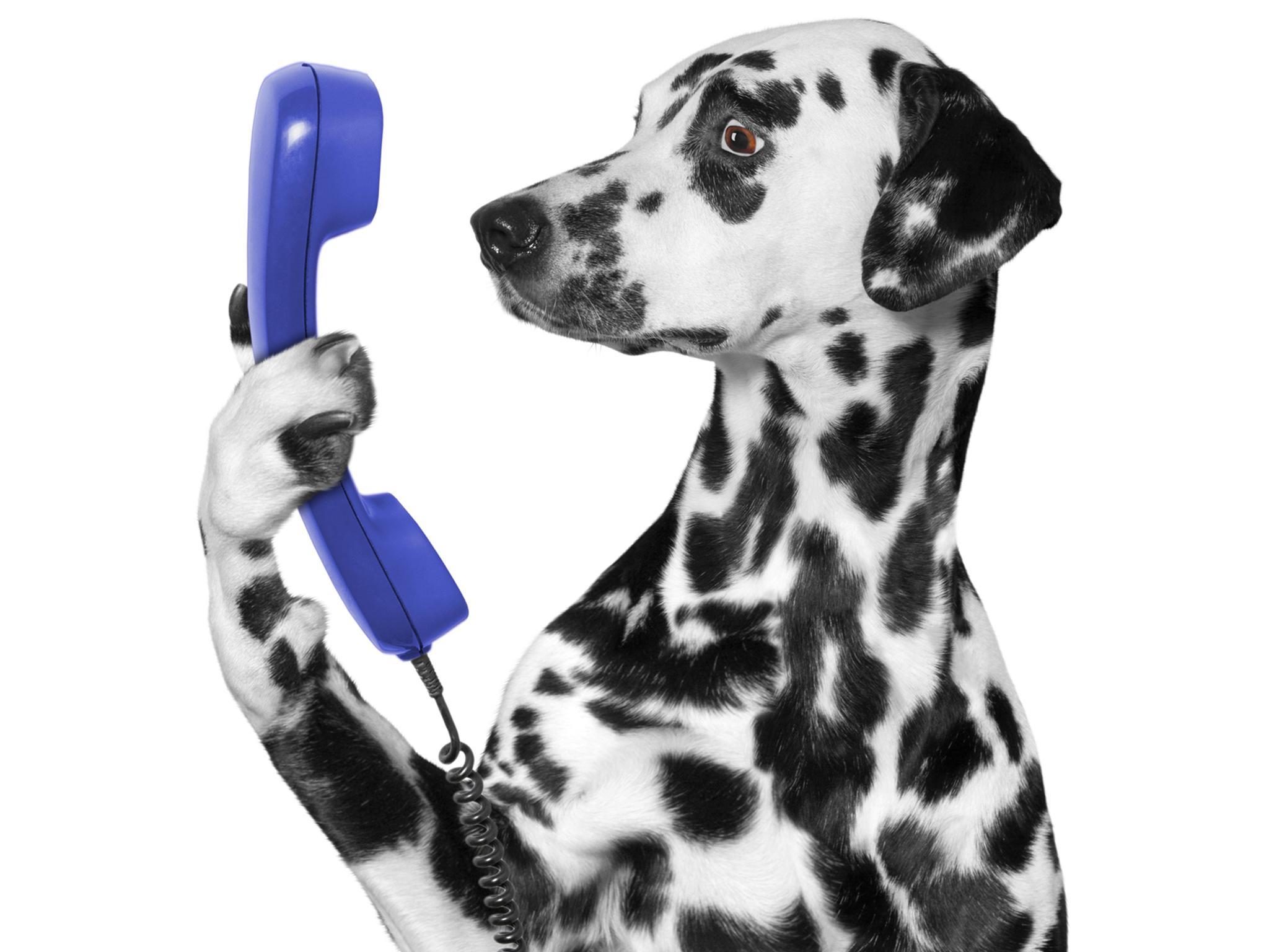 Landline phones review uk dating