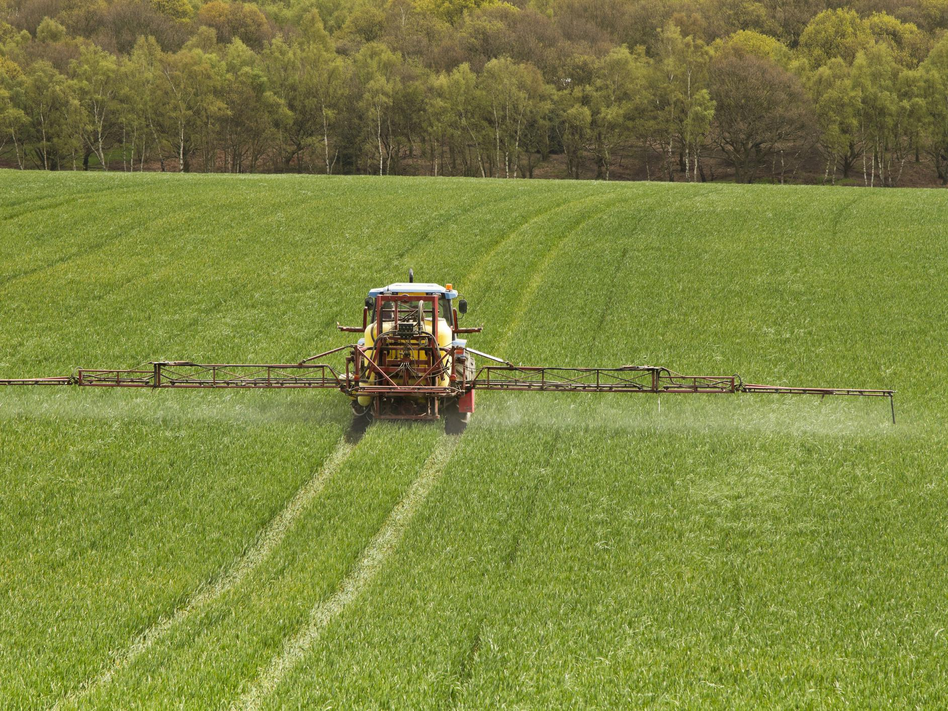 Brexit: UK could lower pesticide standards to US levels in exchange for trade deal, campaigners warn