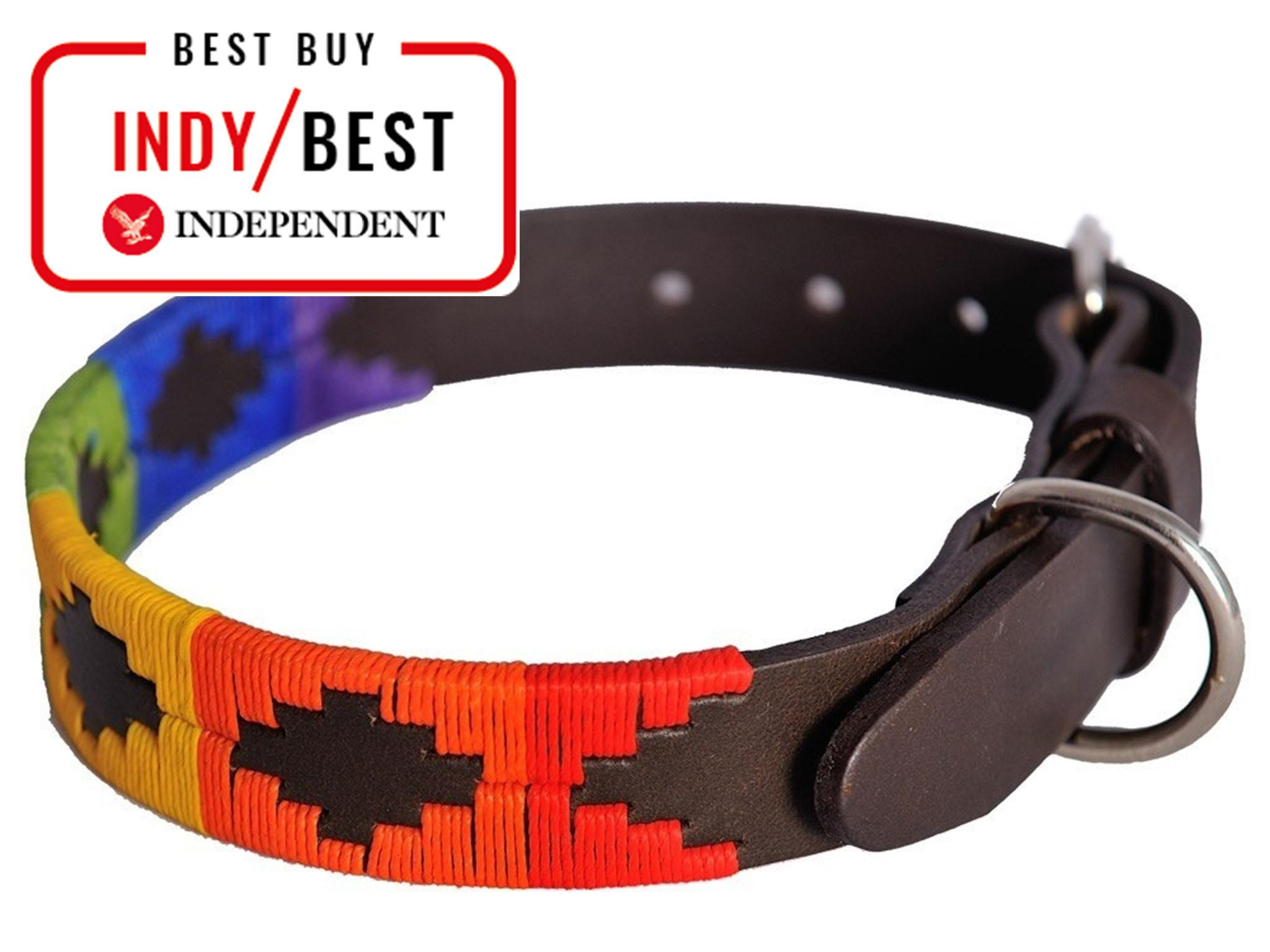 11 best dog collars | The Independent