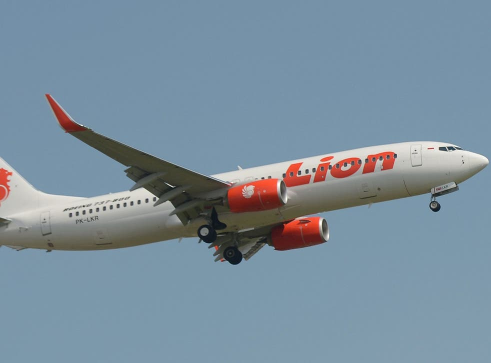 Lion Air faulted the airport's aircraft movement control personnel for the incident (file photo)