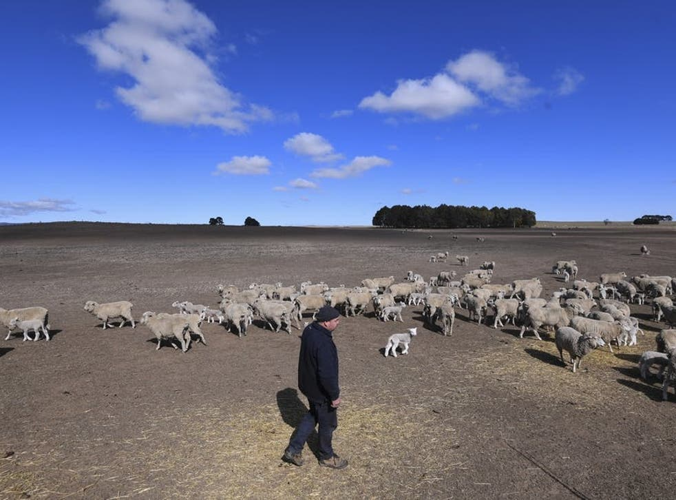 Only the most drought-prone farms in Australia take out cover