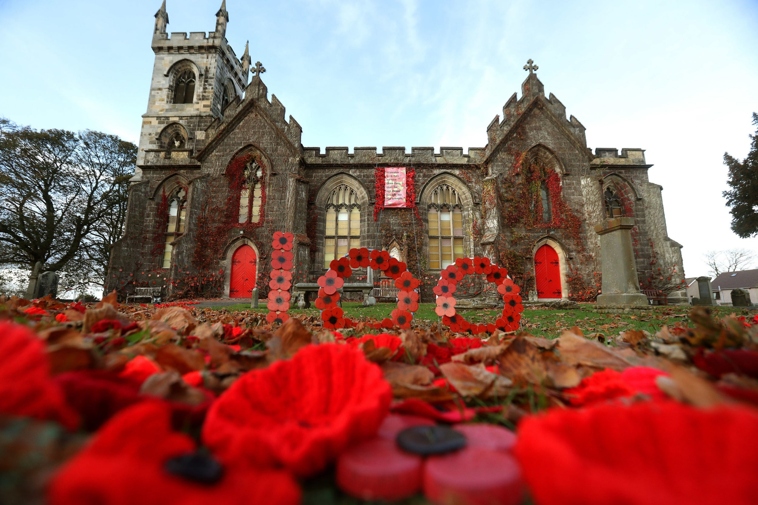 Remembrance Day Why Do We Wear Red Poppies In Tribute To Fallen