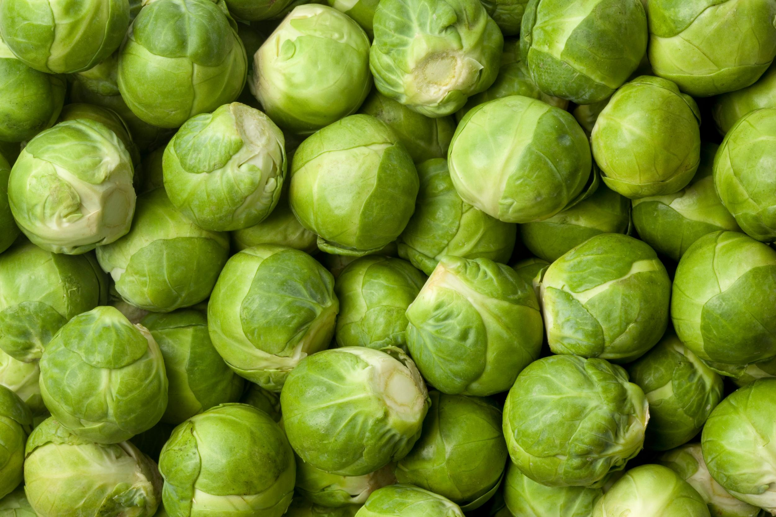 Christmas: Six amazing health benefits of seasonal Brussels sprouts 1