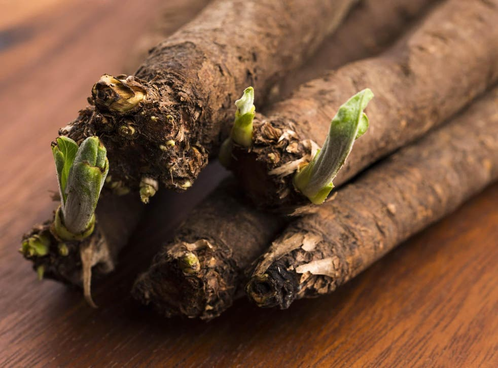 Salsify is tipped to be the hot new root veg on the scene