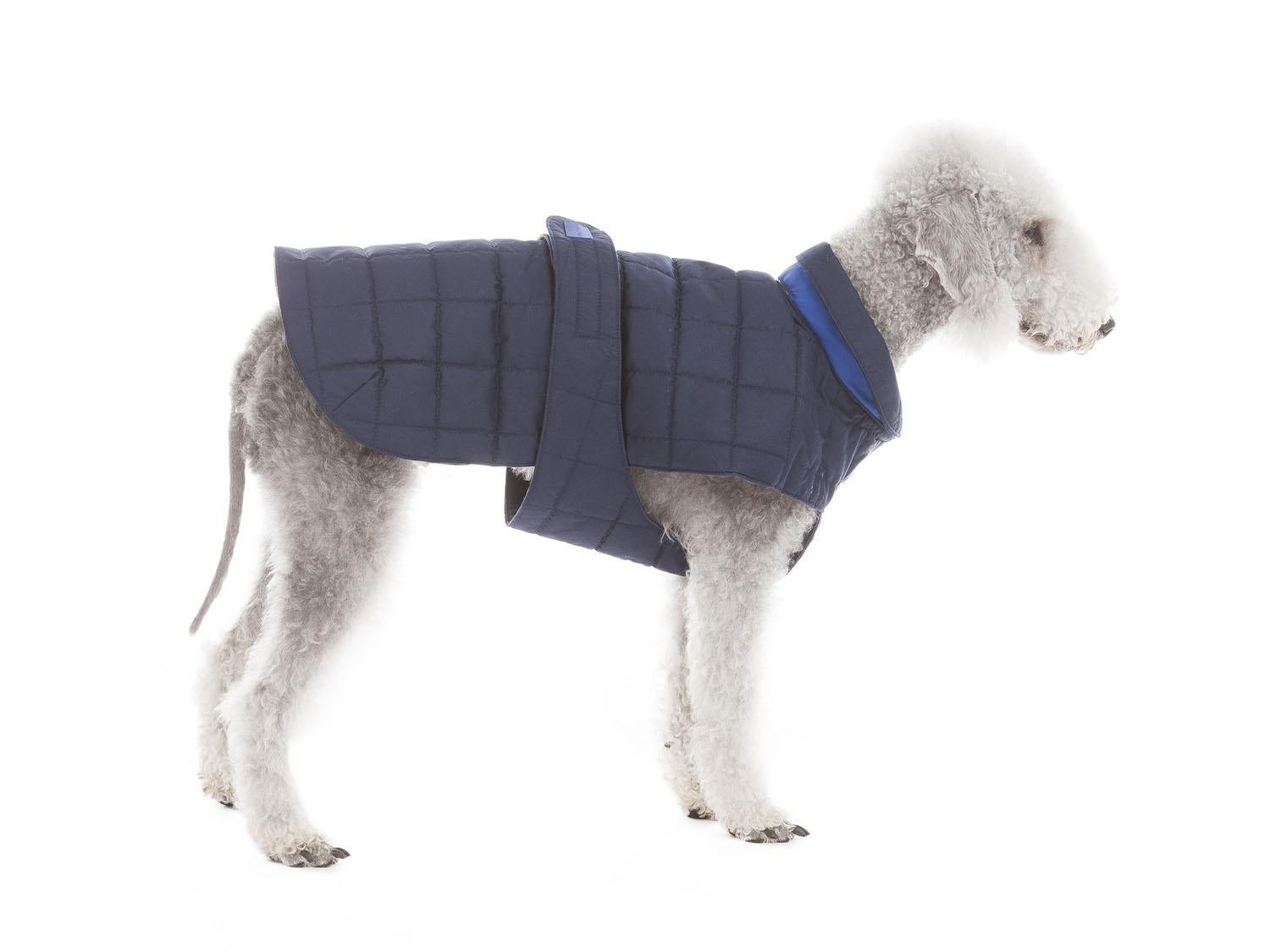 10 Best Dog Coats The Independent
