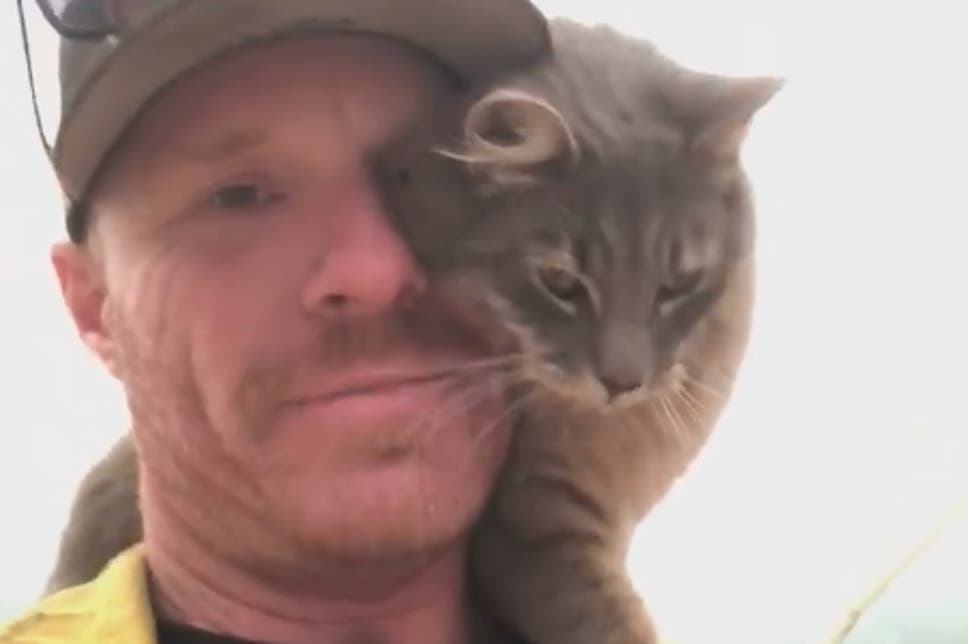 Rescued Cat Adopts a Firefighter