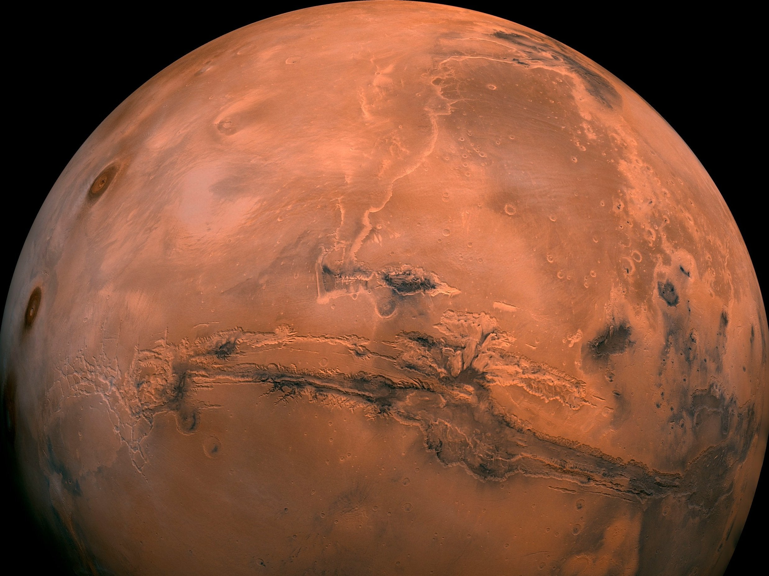 Sperm can survive in low gravity which could help establish colonies on Mars, study suggests