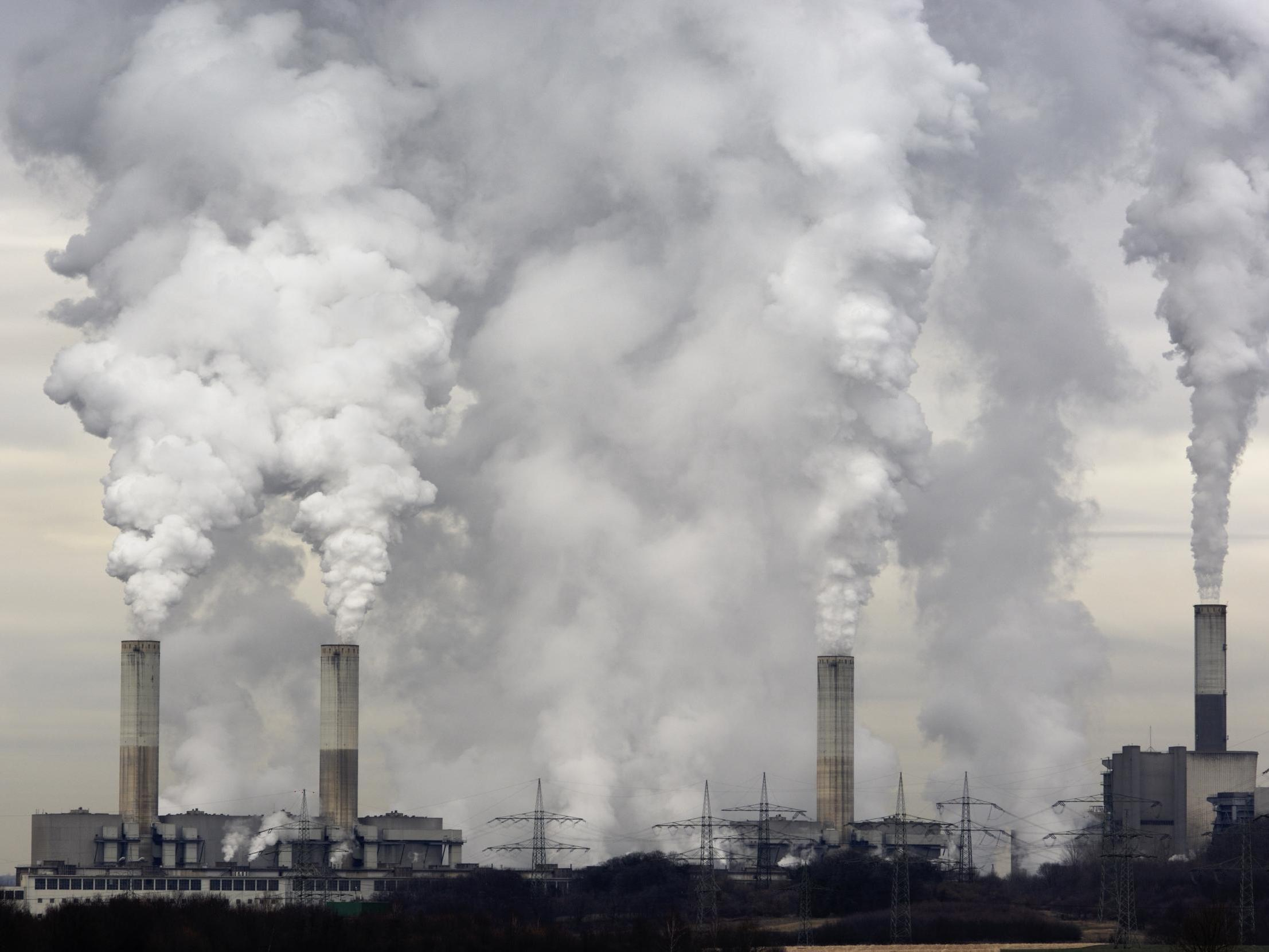 Just 10 per cent of UK companies have a carbon-cutting strategy