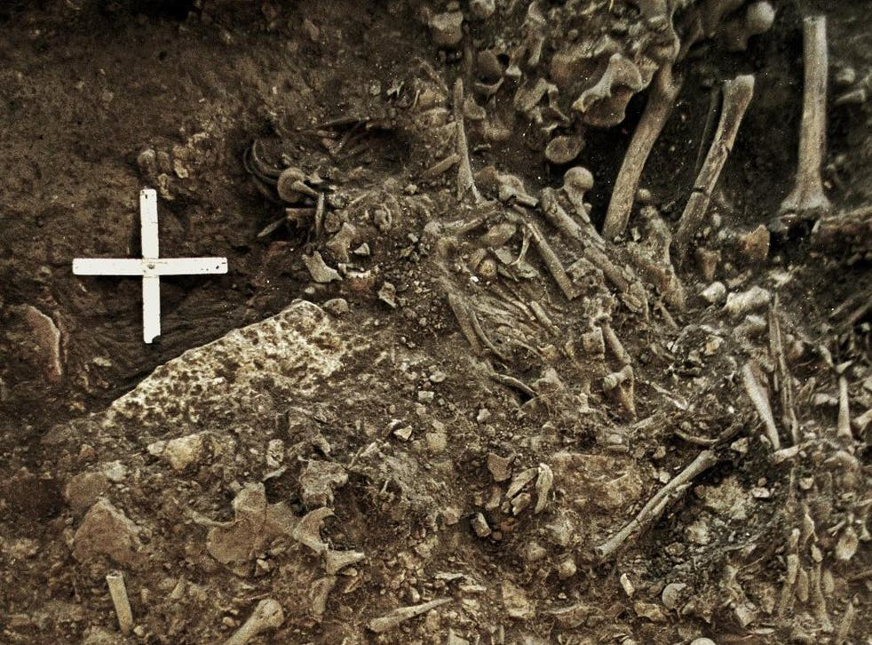 Site containing bones belonging to Swedish woman victim of plague pandemic 5,000 years ago