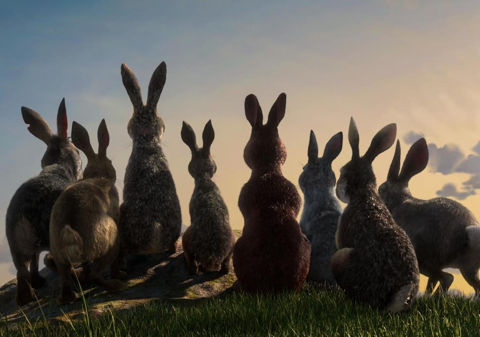 A Still From The Upcoming Adaptation Of Watership Down