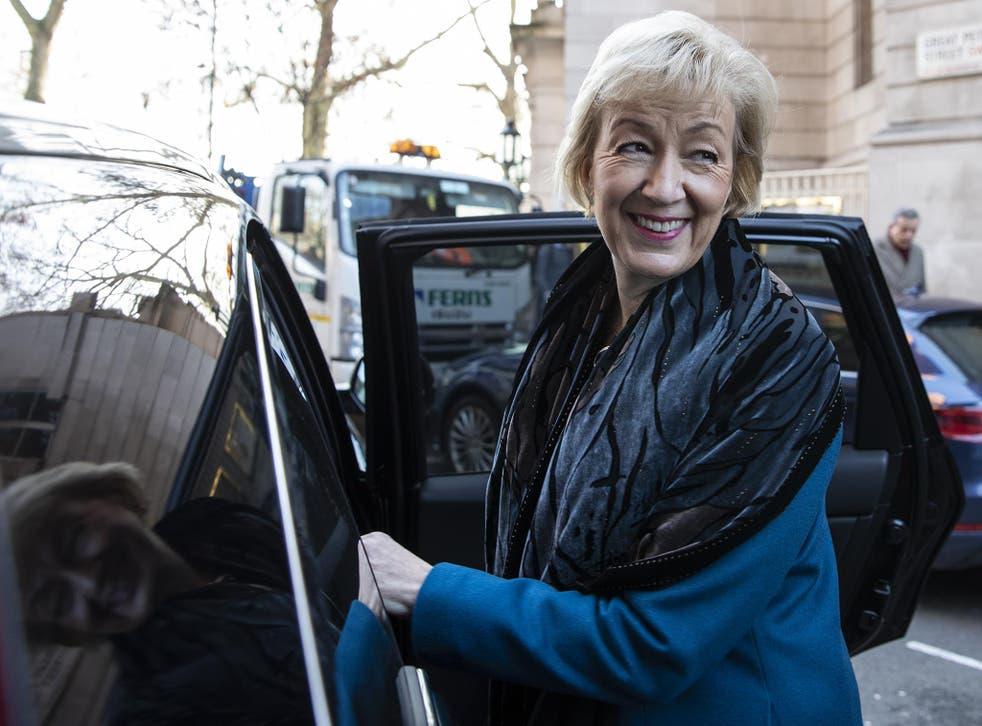 Andrea Leadsom is a 'unicorn hunter' - in the words of David Gauke, the unhappy justice secretary