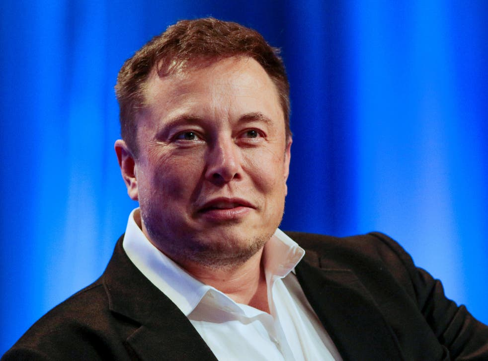 <p>Musk participates in a 'fireside chat' at the National League of Cities Summit in Los Angeles last month</p>