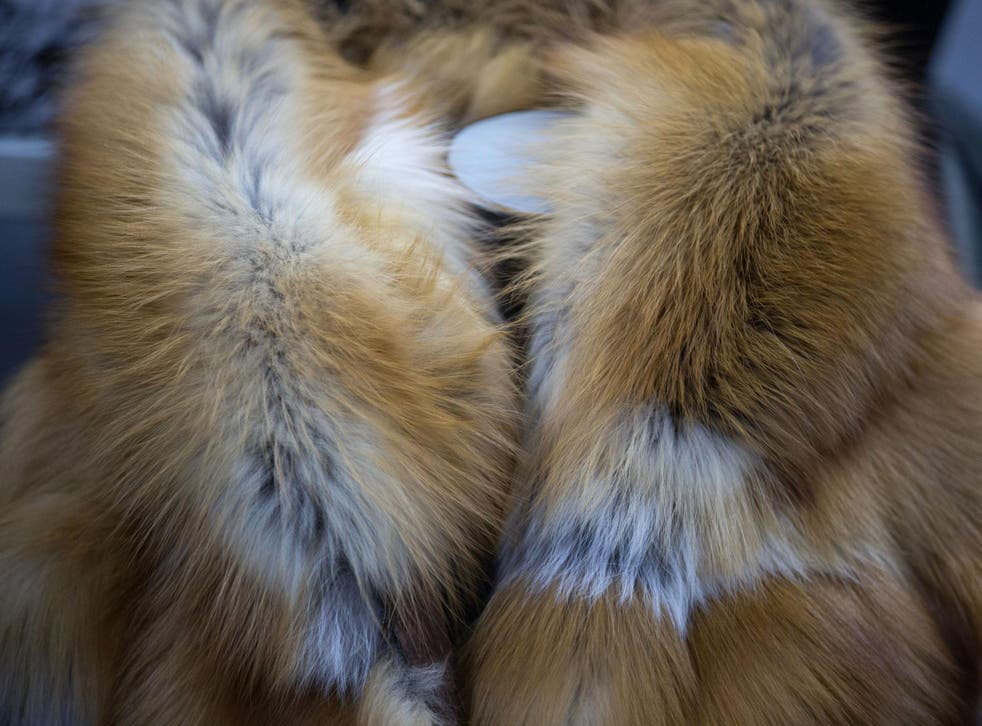 A luxury sable fur coat sits on a mannequin in Yakutsk, Russia
