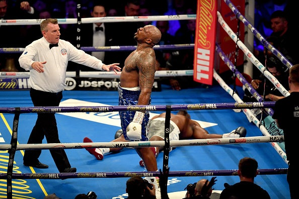 boxing sport the independent