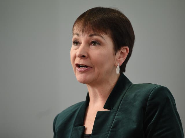 Caroline Lucas says she is prepared to support Corbyn as caretaker PM