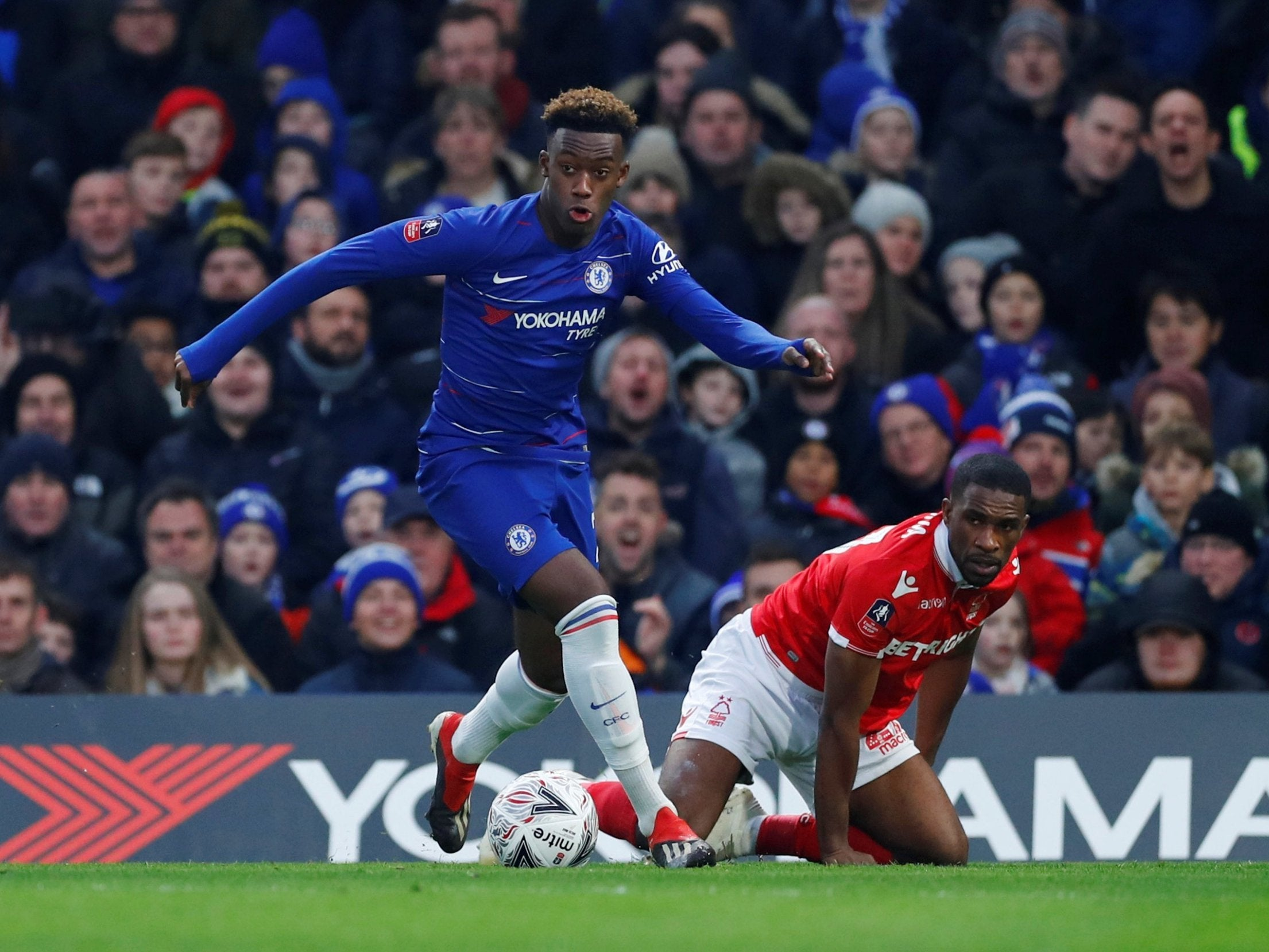 Image result for callum hudson-odoi chelsea vs forest