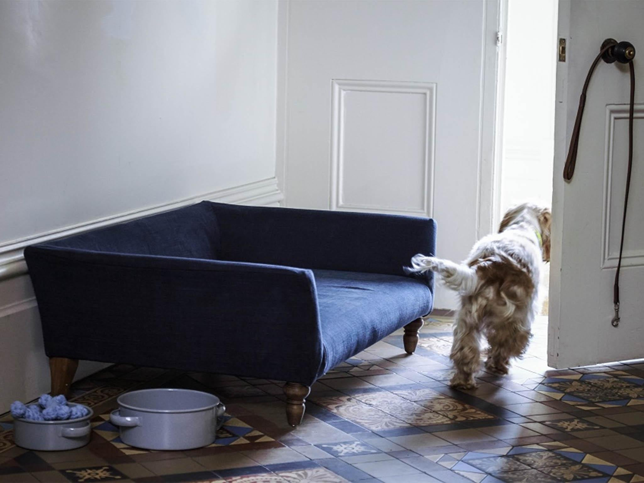 10 best dog beds