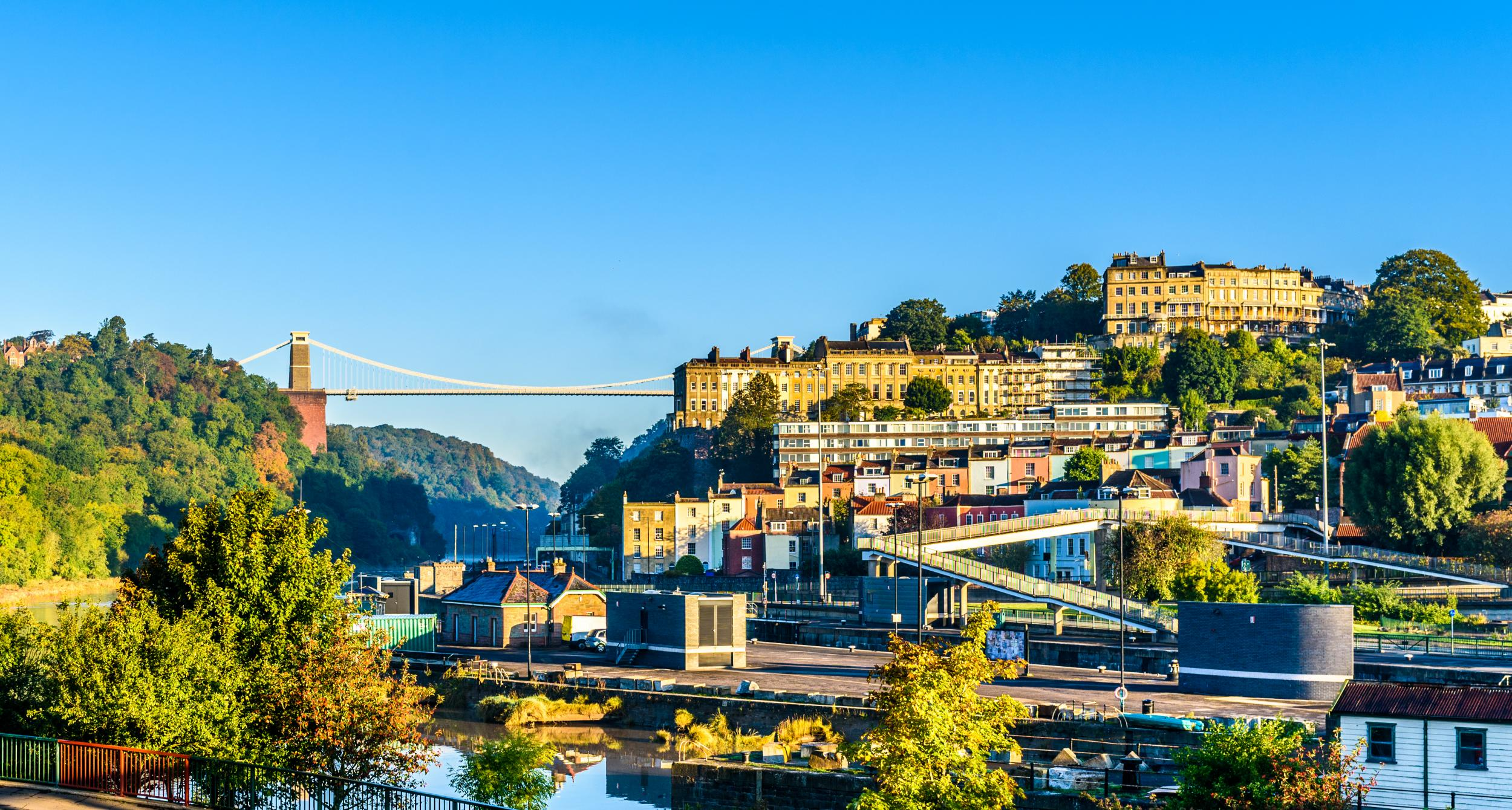 Bristol is vegan capital of the world, a new study claims