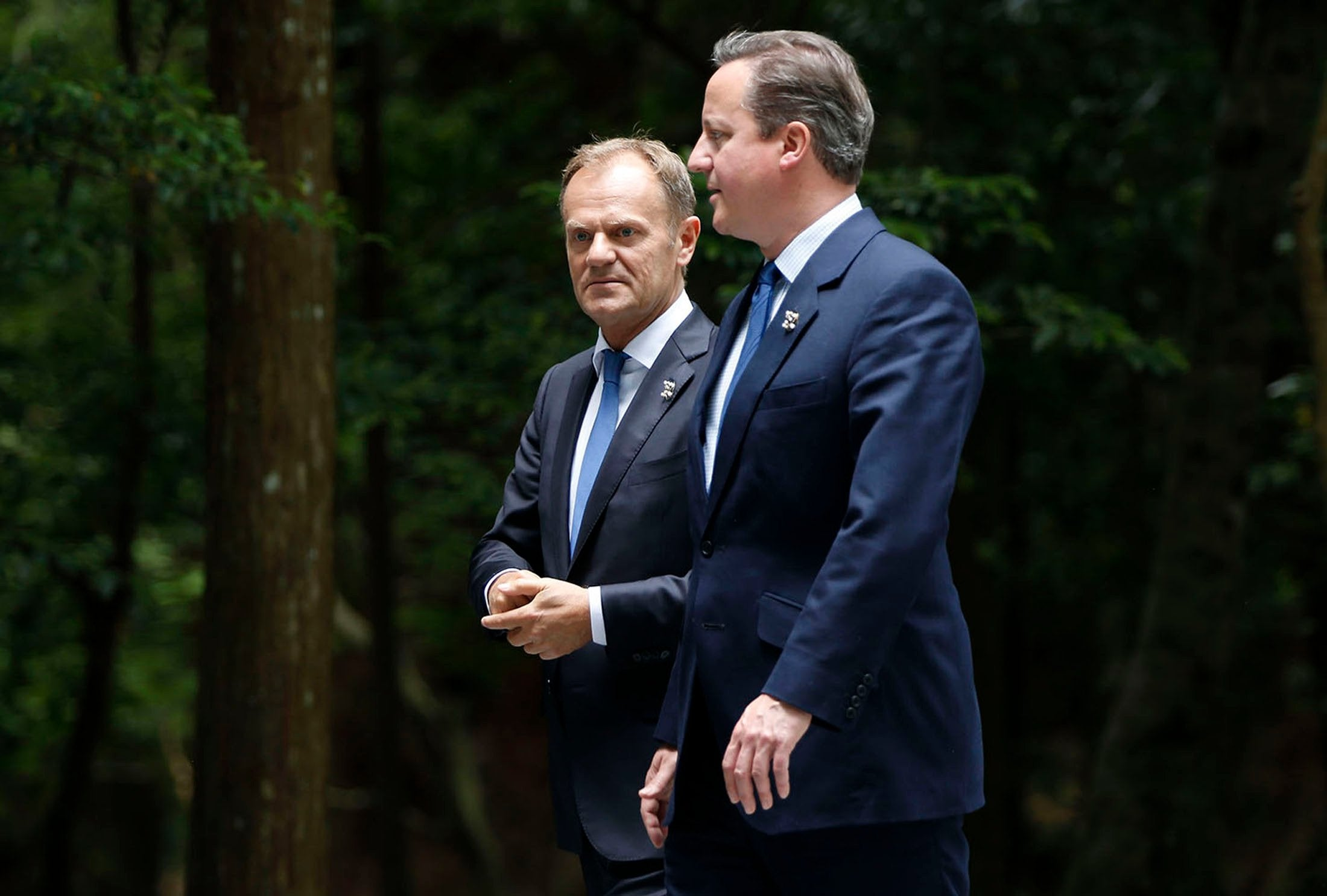 EU president Donald Tusk says he told David Cameron to 'get real' over his 'stupid' Brexit referendum