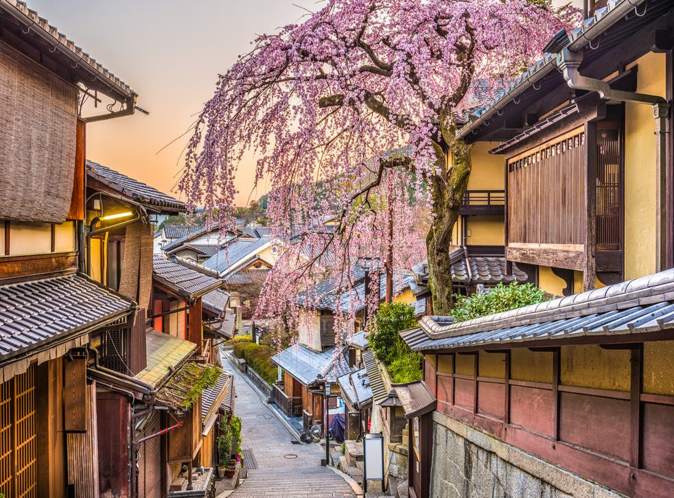 Kyoto on cherry blossom season