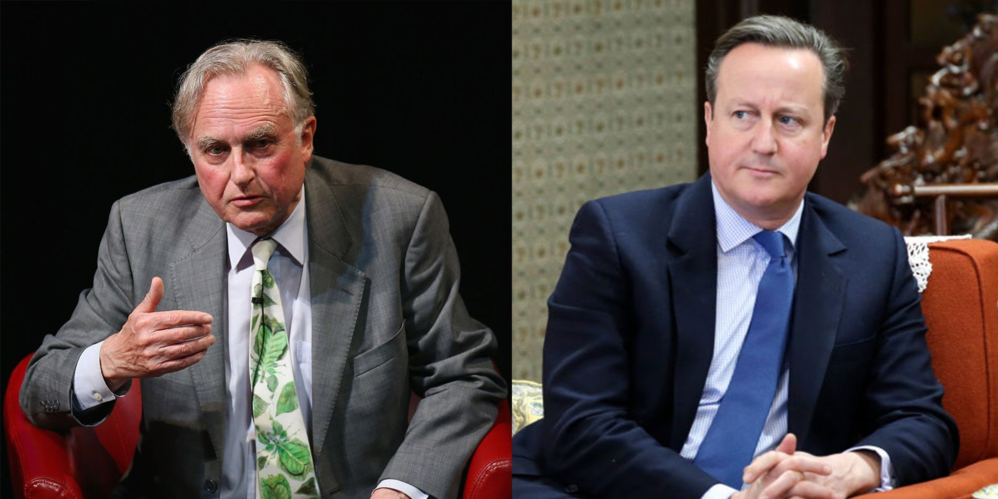 """Brexit: Richard Dawkins believes David Cameron will be """"damned by history"""""""